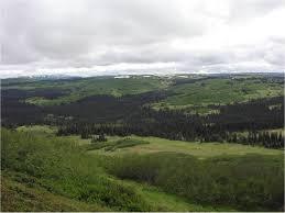 ecological site descriptions nrcs ecological sites