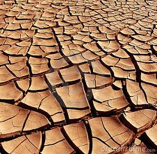 Image result for cracked desert floor