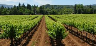 Image result for agritourism