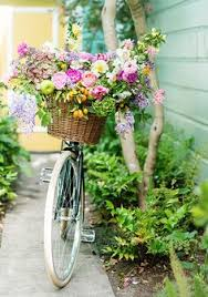 Bycicles: лучшие изображения (21) | Велосипедные прогулки ...