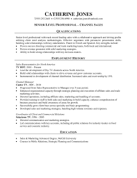 professional resume channel s s professional resume channel s