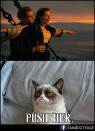 Grumpy Cat on Pinterest | Meme, Grumpy Cat Meme and Cat via Relatably.com