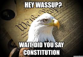 Image result for Constitution memes