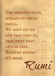Wake up and no matter how hard, get up, breathe! Breathe in the ... via Relatably.com