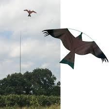 <b>Brown hawk Kite</b> kits. <b>Bird</b> Scarer Protect Farmers Crops.Comes ...