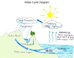 easy to draw water cycle diagram   free collection of pictures of        how to draw a little boy drawing with a lollipop together   water cycle diagram project