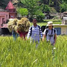 essay rural tourism in india   homework for you  essay rural tourism in india   image