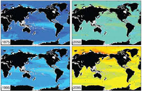Image result for Ocean acidification is the newest global environmental threat