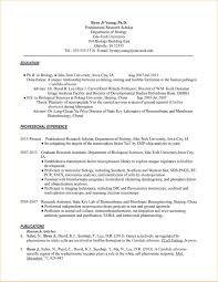 academic cv for phd application sample business proposal page not found robert pallant designs