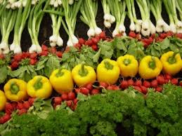 organic farming  pros and cons   ieassaorganic farming can be understood as an agricultural method  in which chemical fertilizers and pesticides are not used  it was introduced by sir albert
