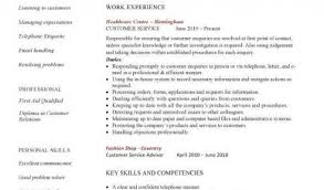 customer service resume example with personal summary with work     customer service resume example with personal summary with work experience as customer service at healthcare centre or academic qualifications
