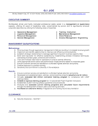 good sales resume summary examples example of a professional    example