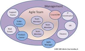 the manager s role in agile scrum alliance managing teams self organization meets leadership intelligence