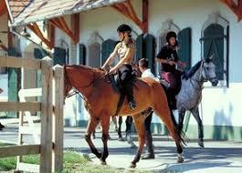 """Képtalálat a következőre: """"lovaglás terepen"""""""