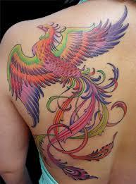 Resultado de imagem para tatuagem fenix
