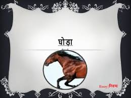 hindi essay on horse for kids      hindi essay on horse for kids
