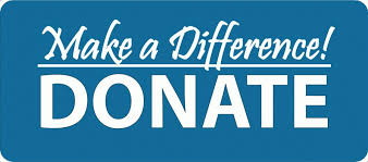 Image result for donate now button