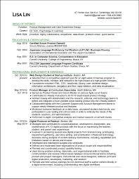 lisa lin product designer resume personal resume design