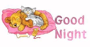 Καλή σας νύχτα...