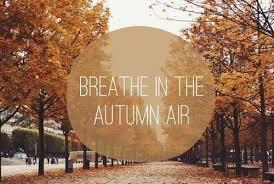 fall season quotes   Tumblr via Relatably.com