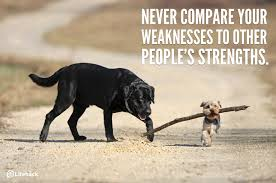 sentences that can brighten your day 1 never compare your weaknesses to other people s strengths