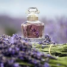 <b>Mon Guerlain</b> Eau de Parfum - <b>Guerlain</b> | Sephora