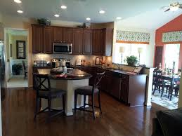Best Type Of Flooring For Kitchen Decorations Simple Design Interior Of Small Kitchen Ideas With
