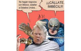 donald-trump-memes_2.jpg via Relatably.com