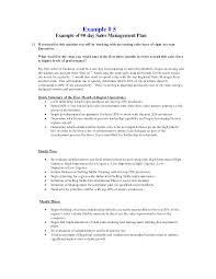 doc sample s plan format strategic marketing s 30 60 90 day s plan template sample s plan format