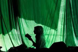Женщины-мусульманки, которые оставили свой след в истории ...