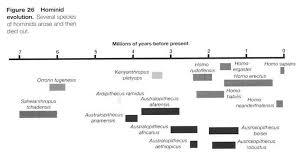 the origin of humans   answers in genesishuman evolution timeline