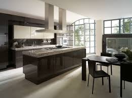 modern kitchen cabinets pictures design inspirations simple