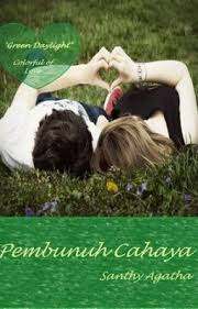 Image result for novel santhy agatha