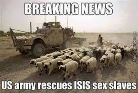 Breaking news - Funny isis meme | Funny Dirty Adult Jokes, Memes ... via Relatably.com