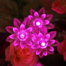 Wish Dayz Christmas <b>Lotus Flower</b> Battery Operated LED <b>Fairy</b>