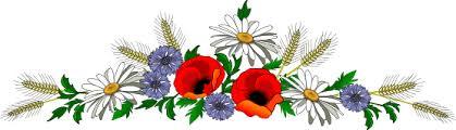 Kết quả hình ảnh cho hìnảnh dây hoa đẹp