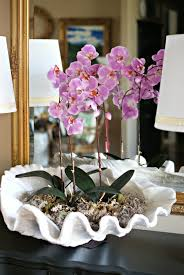 day orchid decor: project shell orchid idea project