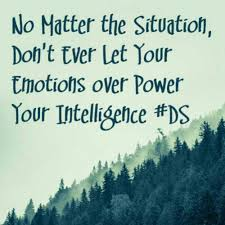 30 + Best Collection Of Intelligence Quotes | Picpulp