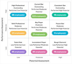 performance appraisal people 9 box model