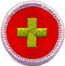 Image result for bsa merit badge images
