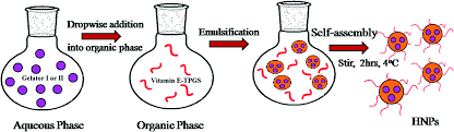 can self assembled hydrogels composed of aromatic amino acid image file c6nj02125e f5 tif