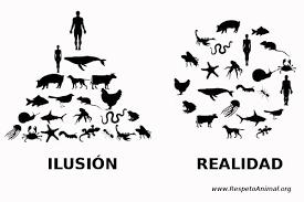 Resultado de imagen de ilusion de superioridad