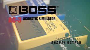 Технические характеристики процессора <b>BOSS RC</b>-300