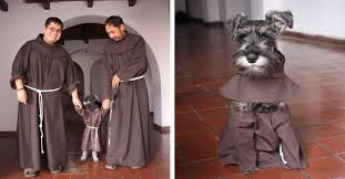 Rescued Monastery Dog is the <b>Newest</b> Member of Franciscan ...