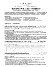 doc 525679 best marketing resume templates and samples on brand marketing resumes template