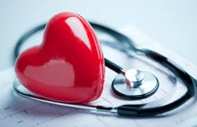 「心臓と血管(冠状循環)」の画像検索結果