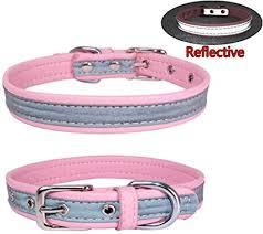 Purple XL Newtensina <b>Fashion Dog</b> Bandana Collar Dog Collar Boy ...