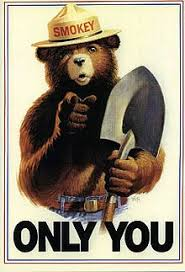 smokey the bear poster only you