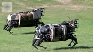 Image result for robot animals