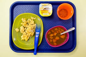 essay on school lunches pevita school lunch essay